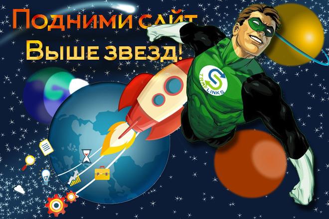Размещу трафиковую ссылку для SEO прокачки страницы Вашего сайта 1 - kwork.ru