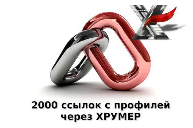 2000 ссылок с профилей от прогона Хрумером 1 - kwork.ru