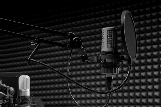 Озвучу рекламные ролики, аудиокнигу, автоответчик, инструкцию 1 - kwork.ru