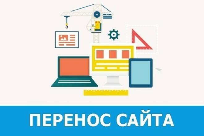 Быстро перенесу ваш сайт на новый домен, хостинг 1 - kwork.ru