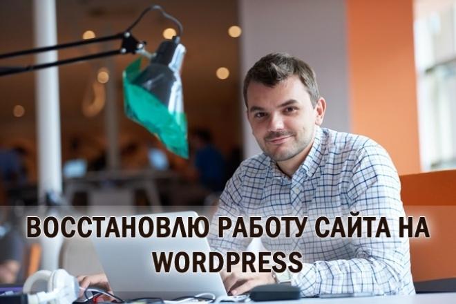 Помогу вам восстановить работу сайта на Wordpress 1 - kwork.ru