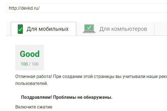 Оптимизирую сайт для Google Pagespeed Insights 1 - kwork.ru