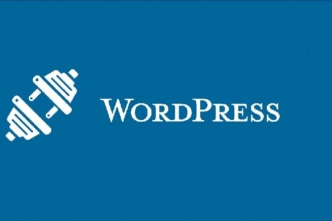 Установлю на Ваш сайт любой плагин WordPress 1 - kwork.ru