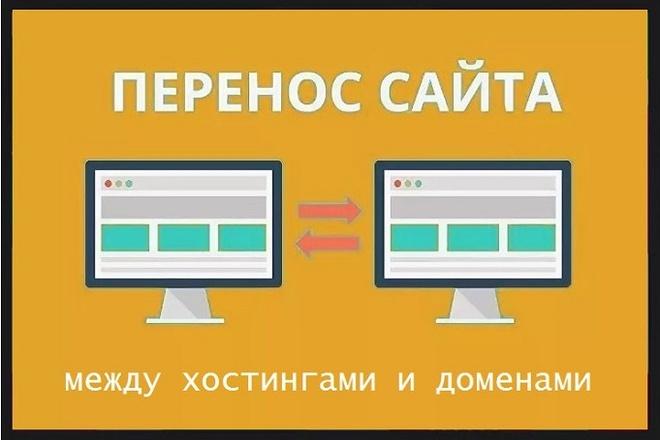 Перенос и установка сайта на домен 1 - kwork.ru
