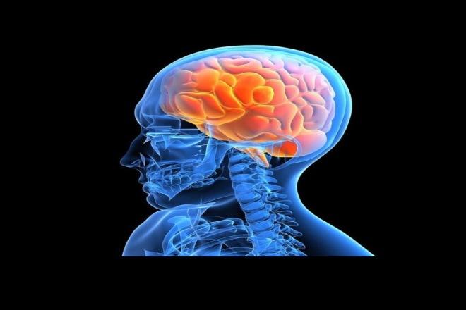 Напишу медицинскую статью факты о мозге 1 - kwork.ru