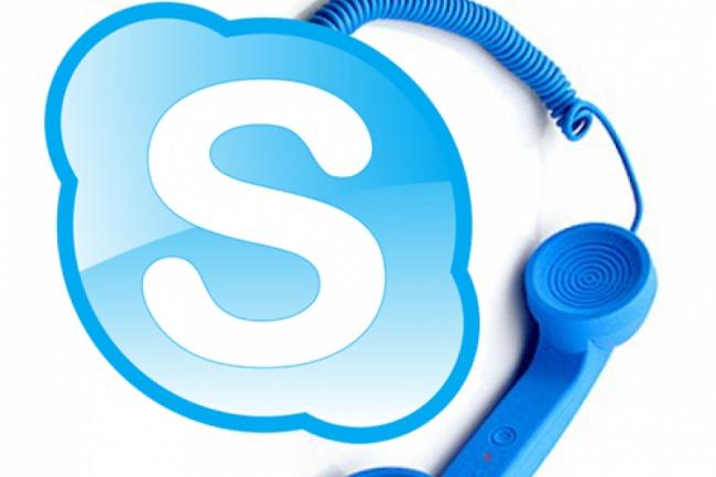 Онлайн консультация по Скайпу 1 - kwork.ru