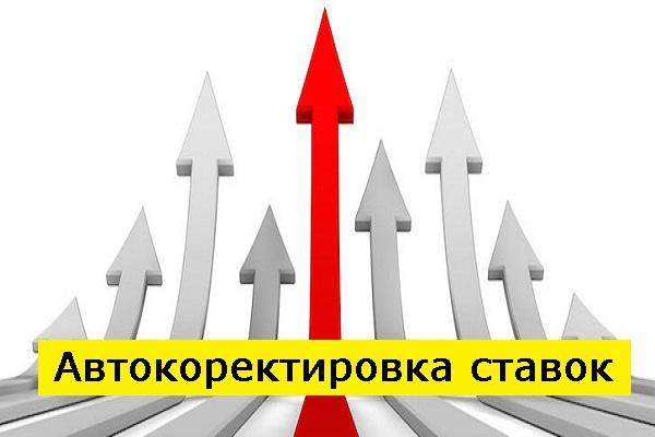 Перенесу аккаунт Директ на платформу с автоуправлением ставками 1 - kwork.ru