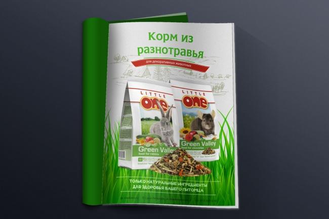 Брошюра или буклет 1 - kwork.ru