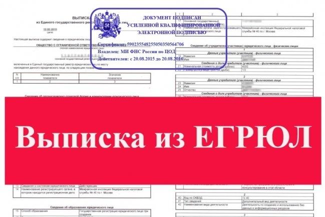 Срочное предоставление выписки из егрюл егрип 1 - kwork.ru