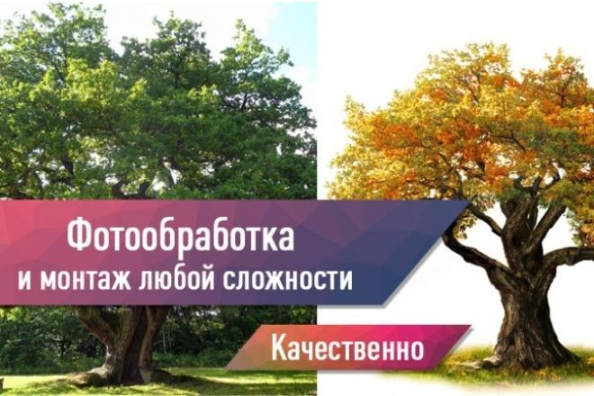 Фотообработка и монтаж любой сложности 1 - kwork.ru