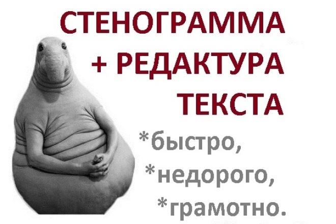 Переведу 1 час любой записи в грамотно оформленный текст 1 - kwork.ru