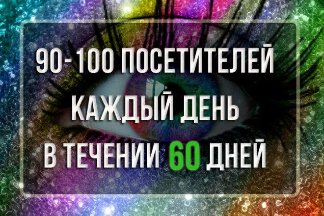 90-100 посетителей каждый день, в течении 60 дней 17 - kwork.ru