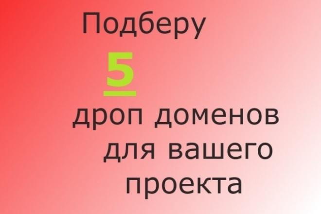 Подберу 5 дроп доменов для вашего doorway проекта 1 - kwork.ru