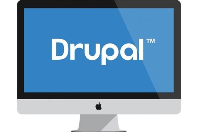 Помогу одолеть Drupal 1 - kwork.ru