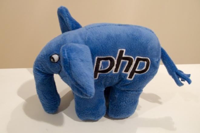 Написание, доработка, оптимизация небольших PHP скриптовСкрипты<br>Создам для Вас небольшие php скрипты. Например, форму обратной связи для вашего сайта. Также могу исправить ошибки в уже имеющихся у Вас php скриптах.<br>