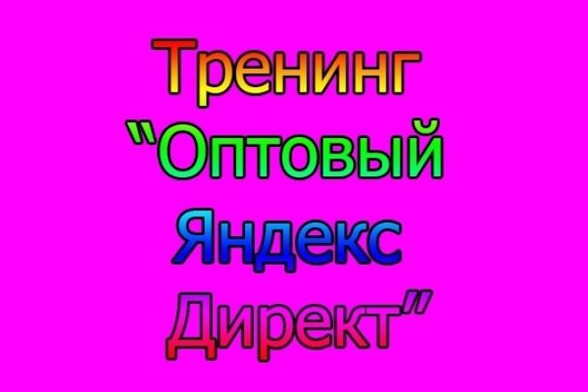 Тренинг Оптовый Яндекс Директ 1 - kwork.ru