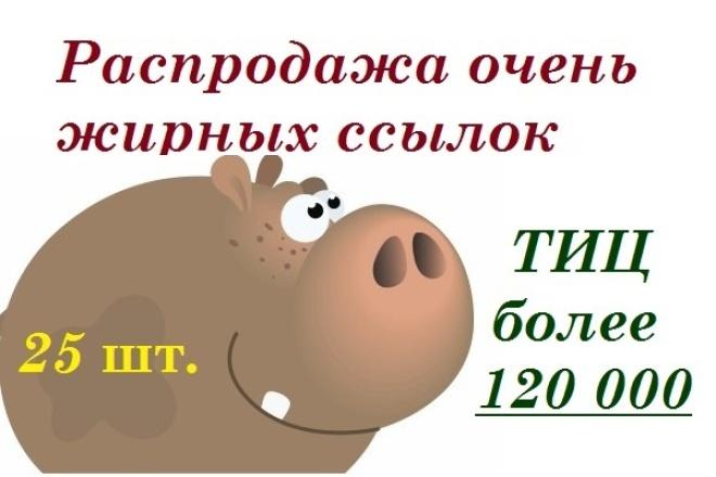 25 вечных трастовых ссылок, с ТИЦ более 120 000 1 - kwork.ru