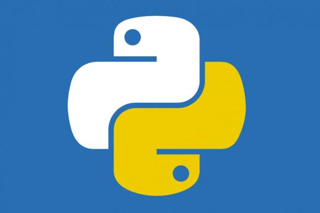 Напишу скрипт на Python 1 - kwork.ru