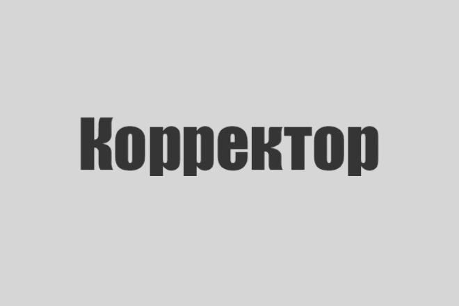 Исправлю ошибки в тексте 17 - kwork.ru
