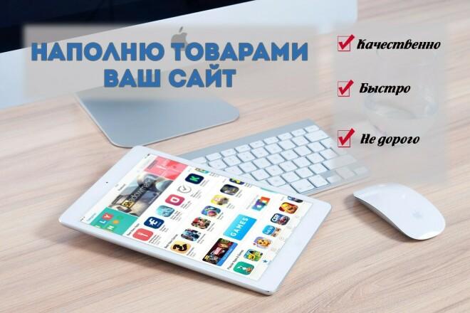 Наполню контентом или товарами Ваш сайт 1 - kwork.ru