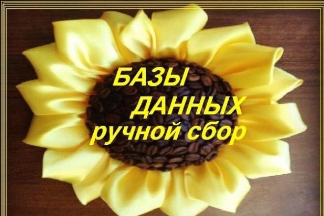 Сбор баз данных вручную из открытых интернет-источников 1 - kwork.ru