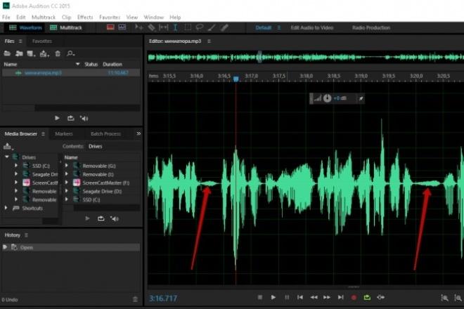 Очищение и обработка звукаРедактирование аудио<br>1.Очистка от шумов и нормализация 2.Удаление фоновых шумов 3.Oбщая чистка на протяжении аудиозаписи<br>