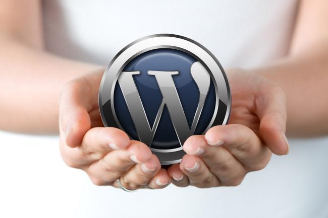 Установлю вордпрес и проконсультируюАдминистрирование и настройка<br>Вы получите Готовый сайт/блог на вордпресс на вашем хостинге/сервере с необходимым набором плагинов. Настроенную тему на Ваш выбор Консультации и рекомендации по использованию вордпресса для различных приложений - сайты, блоги, интернет магазины.<br>