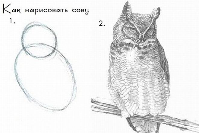 Оцифровка текста 1 - kwork.ru