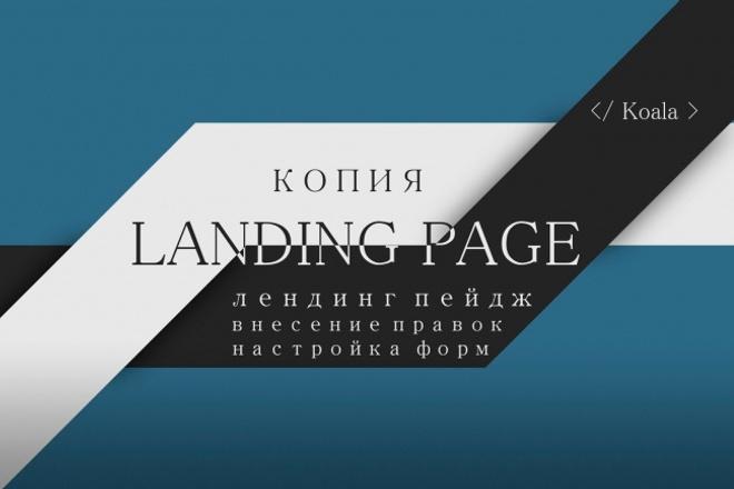 Скопирую Landing Page - лендинг пейдж - одностраничный сайт 1 - kwork.ru