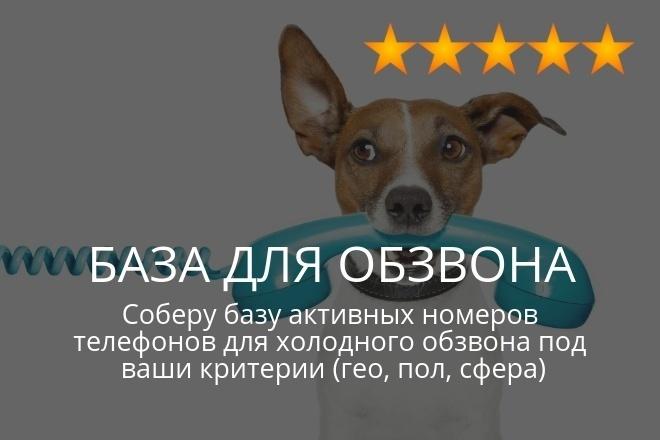 База для холодного обзвона, для смс или ватсап рассылки, для звонков 1 - kwork.ru