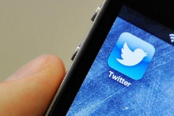 Размещу ссылку на ваш сайт в 130 живых твиттерах 1 - kwork.ru