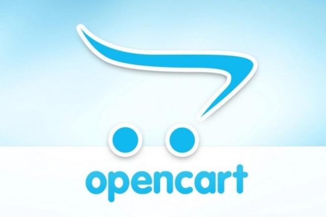Консультирование по улучшению  интернет-магазина на OpenCart 1 - kwork.ru