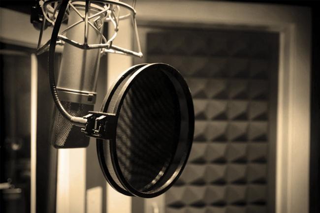 Сведу голос с музыкойРедактирование аудио<br>Сведу Ваш вокал с минусовкой. Быстро и качественно. Ваша мечта о звёздном исполнении любимой песни станет реальностью!<br>