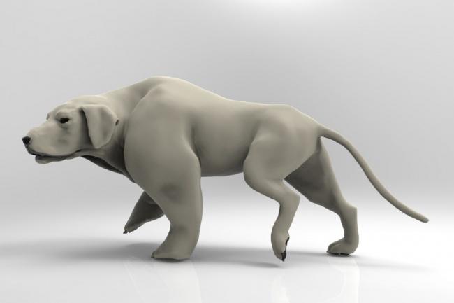 Создам 3D-модель животного 1 - kwork.ru