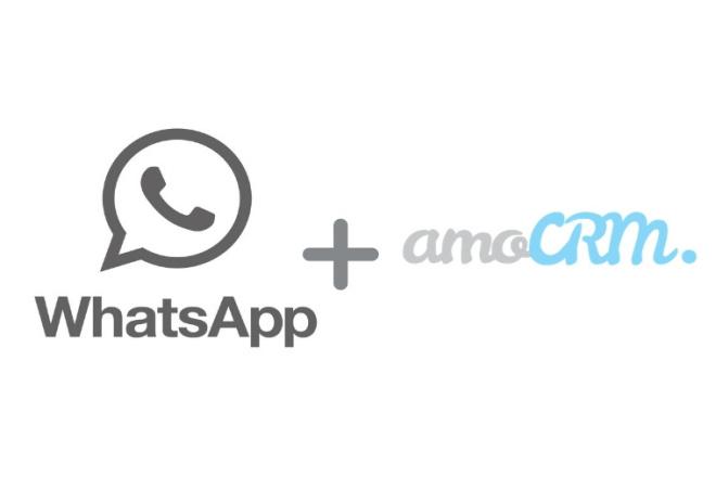WhatsApp и amoCRM интеграция по API 1 - kwork.ru