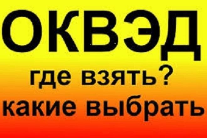 Дополню изменю коды оквэд 1 - kwork.ru