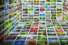 500 стоковых изображений в PNG 16 - kwork.ru