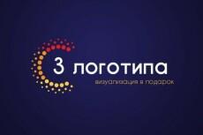 Установлю и настрою любой шаблон на WordPress 8 - kwork.ru