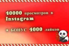 40000 просмотров в Instagram быстрое выполнение. Менее суток 21 - kwork.ru