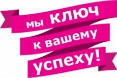 Настройка Яндекс Директ + бонус настройка метрики 17 - kwork.ru