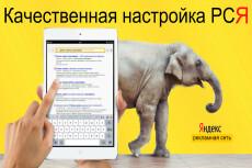 Настройка Яндекс.Директ, РСЯ 15 - kwork.ru