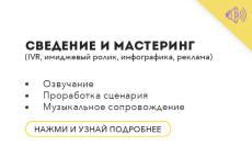 Озвучка роликов, либо рекламы 9 - kwork.ru