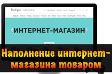формирование ассортимента товаров для магазина 100 штук 10 - kwork.ru