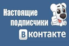 Оформлю аккаунты ВКонтакте быстро и дешево 26 - kwork.ru