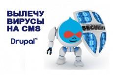 установлю Drupal на ваш хостинг 5 - kwork.ru