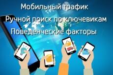 Привлеку 20 000 уникальных посетителей на сайт 14 - kwork.ru