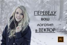 Качественная векторная отрисовка 45 - kwork.ru