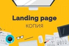 Копия лендинга за 1 час, с установкой на ваш хостинг 13 - kwork.ru