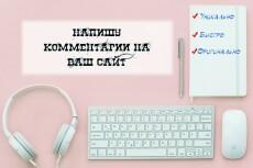 Ручное наполнение интернет-магазина товаром, контентом 42 - kwork.ru