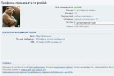 установлю шаблон wordpress 7 - kwork.ru